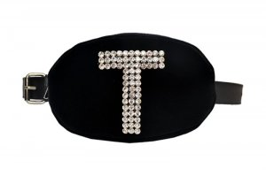 T Belt Bag